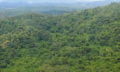 ถอนสิทธิ์ พื้นที่เขตห้ามล่าสัตว์ป่า